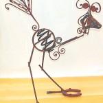 paradiesvogel2
