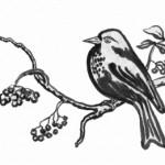 vogelberbaum2